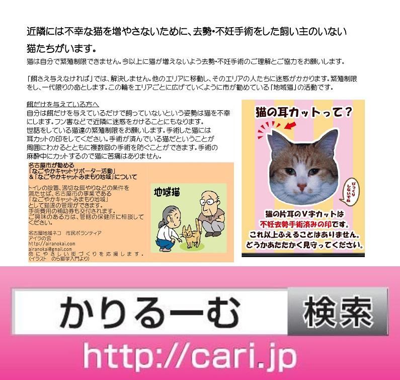 moblog_47b1e1cf.jpg