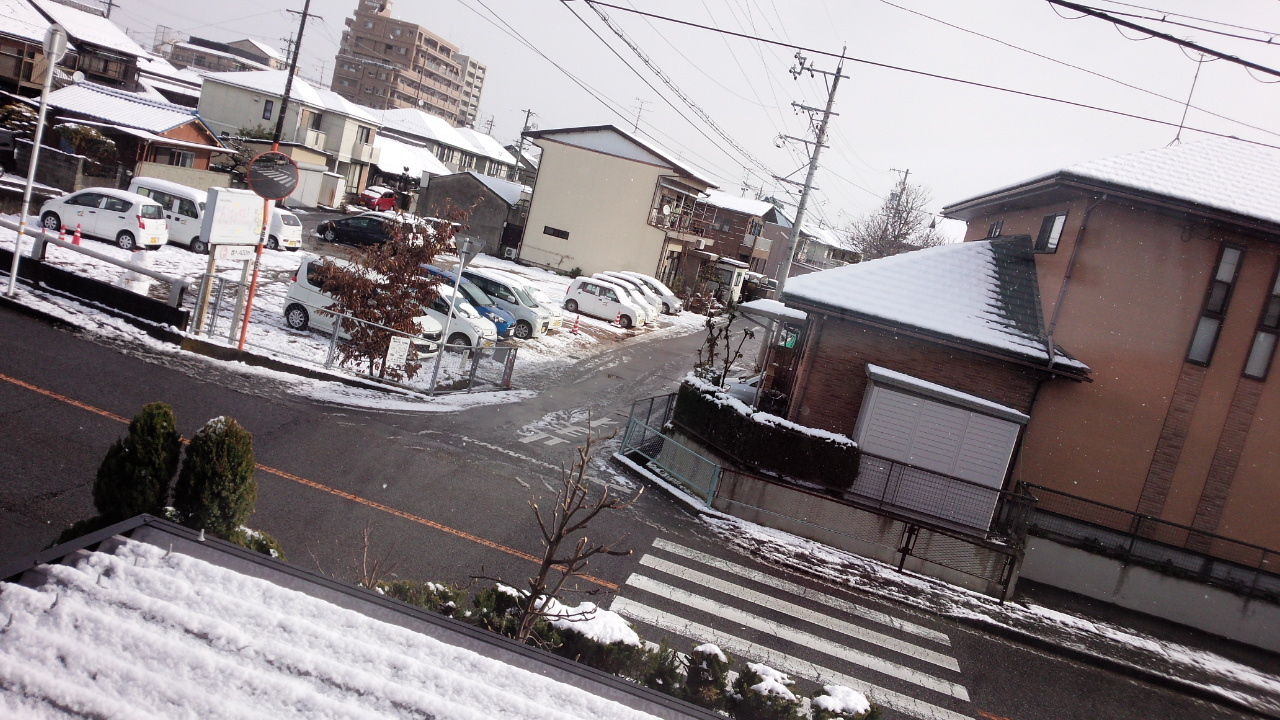 DSC_3796.jpg