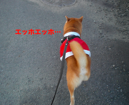 IMG2014-2.png