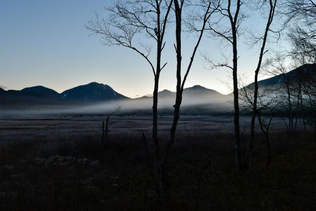 朝靄の小田代ヶ原