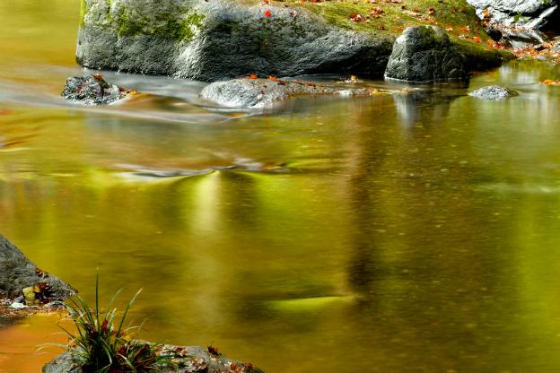 秋色の写り込み