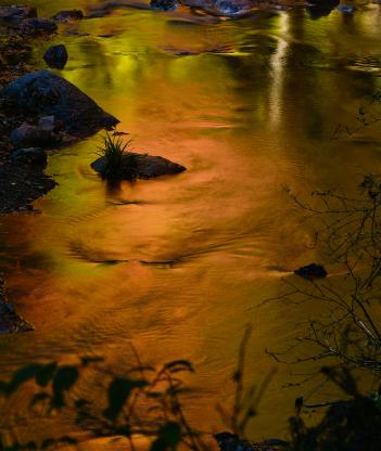流れに写す秋彩