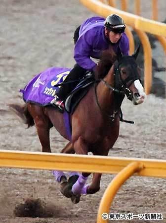 【有馬記念】シュヴァルグラン林助手、福永に注文 「スタミナ切れしたことのない馬。もう少し積極的に」