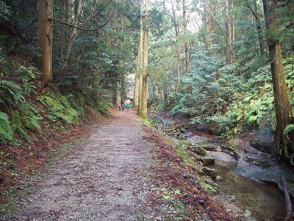 壇鏡の滝への道