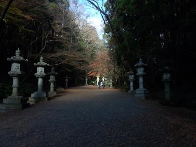photo_randner_kasimaikisukatori_1218_21_2016_1218.jpg