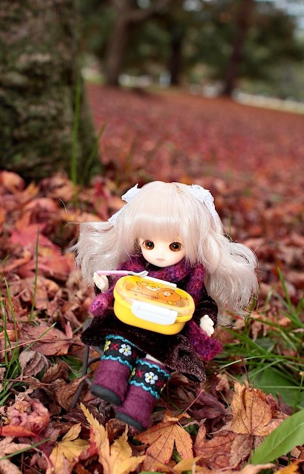 Brownie-nene0116.jpg