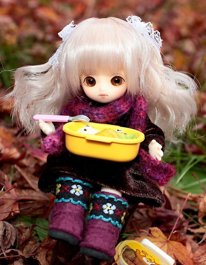 Brownie-nene0120.jpg