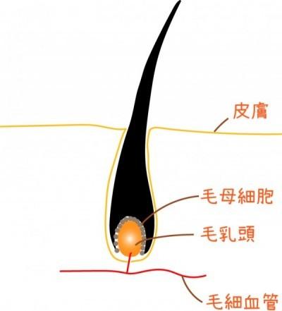 mounyuutou-e1440337797745.jpg