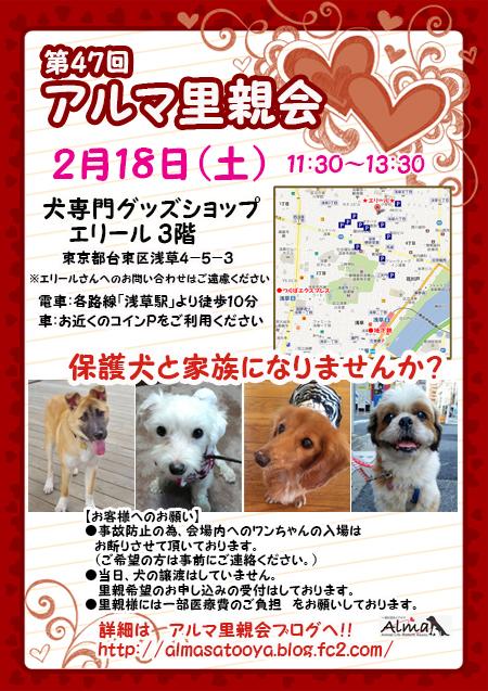 poster_201701291125245c9.jpg