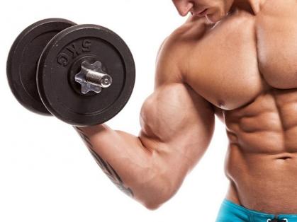 筋肉の老化と栄養素