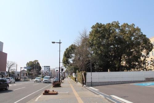 0201:和歌山県本庁舎 庁舎前通り