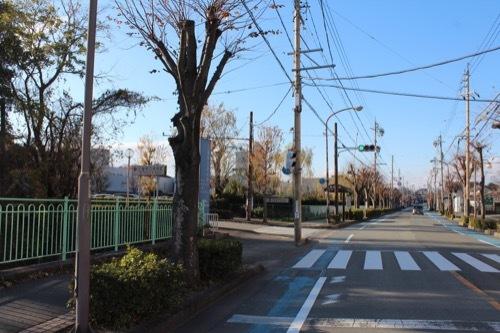 0208:三重県立美術館 美術館手前の交差点