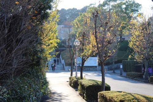 0208:三重県立美術館 美術館手前の道