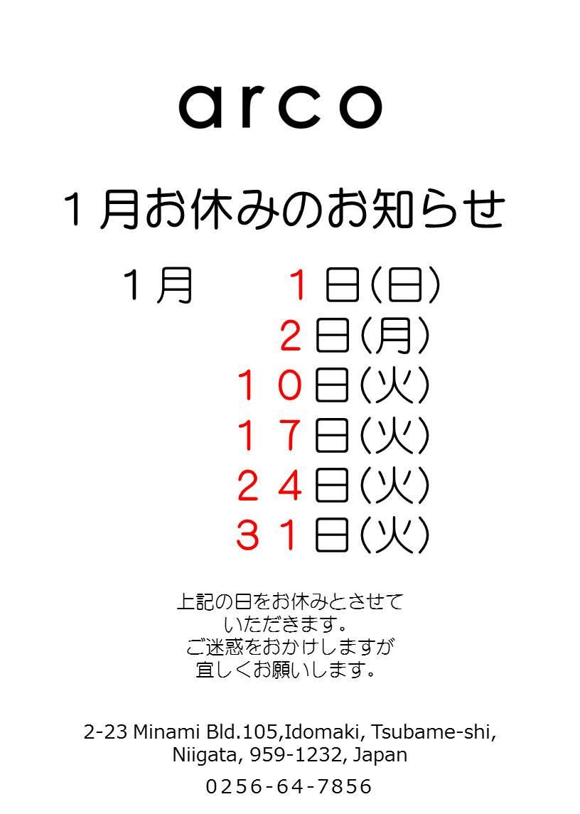 2016123112311185c.jpg