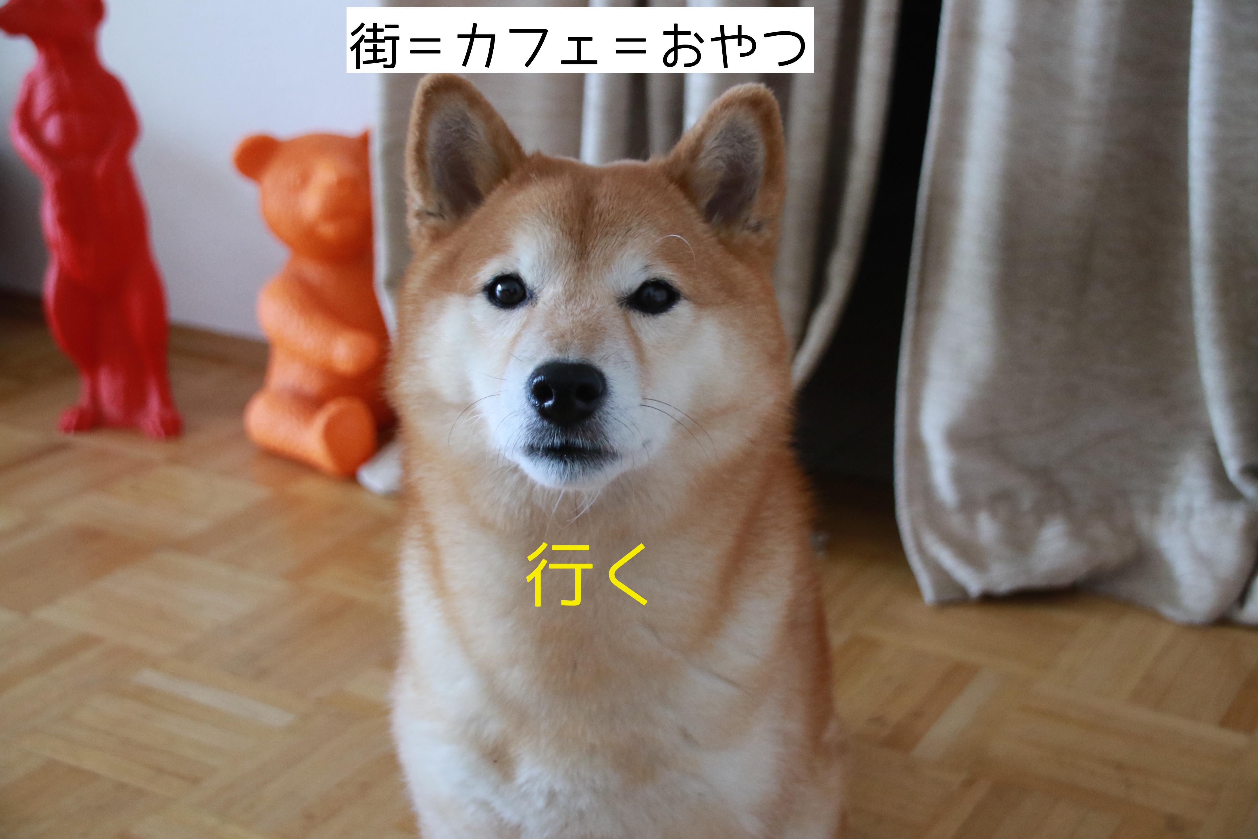 20161121181437f98.jpg