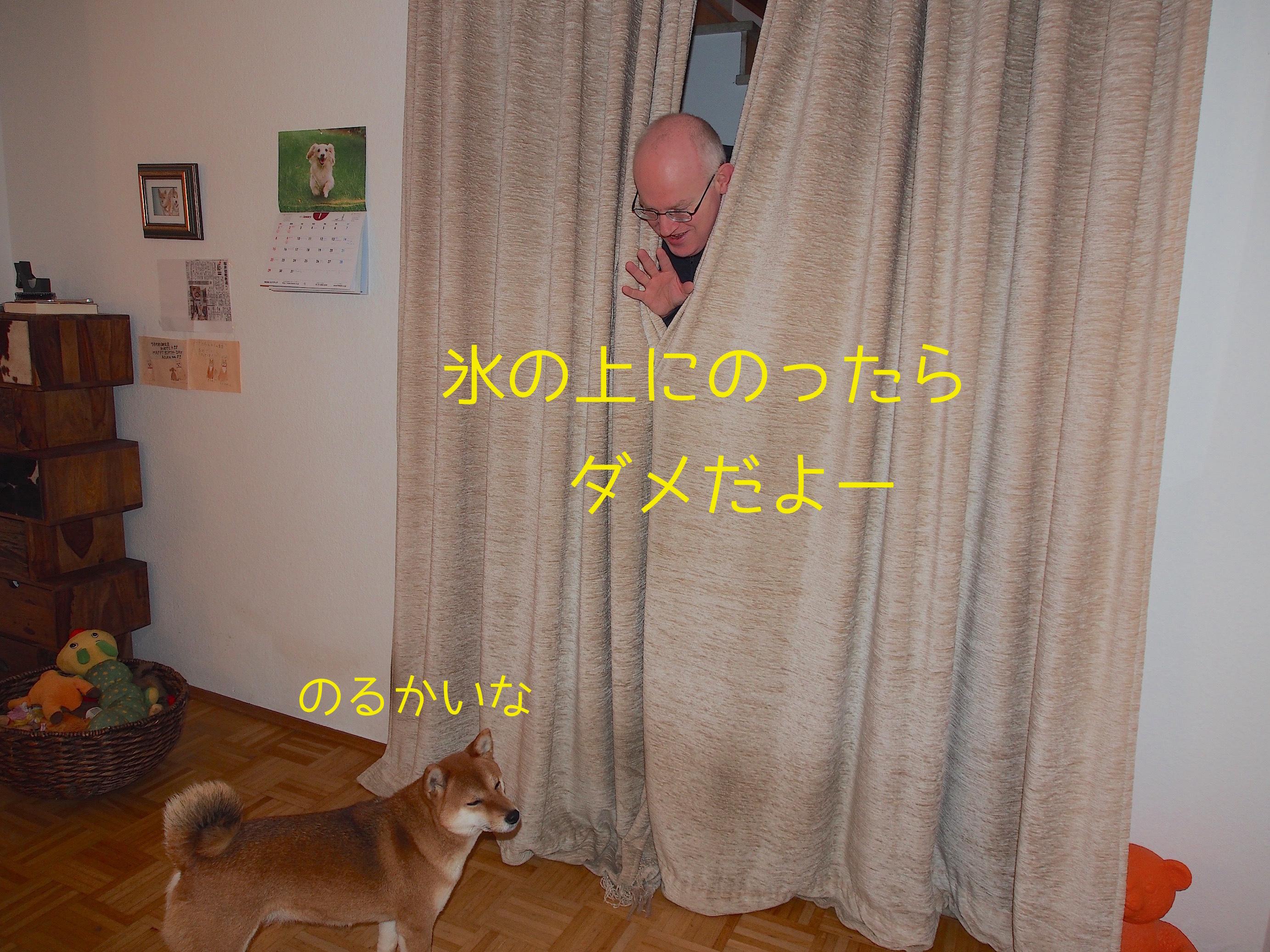 20170125203008362.jpeg