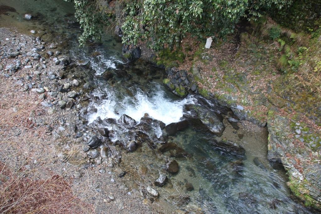 やはり清滝川は綺麗だ_1