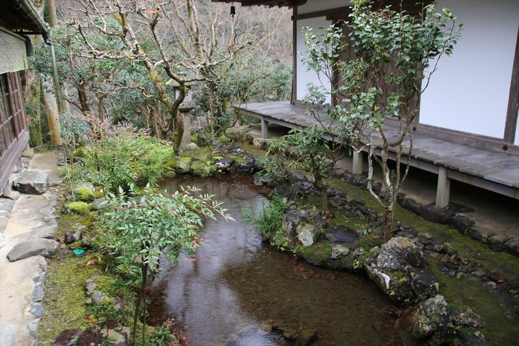 渡り廊下脇の小さな池_2