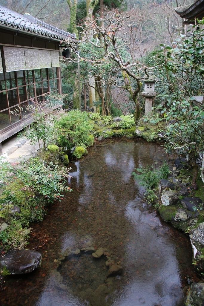 渡り廊下脇の小さな池_3