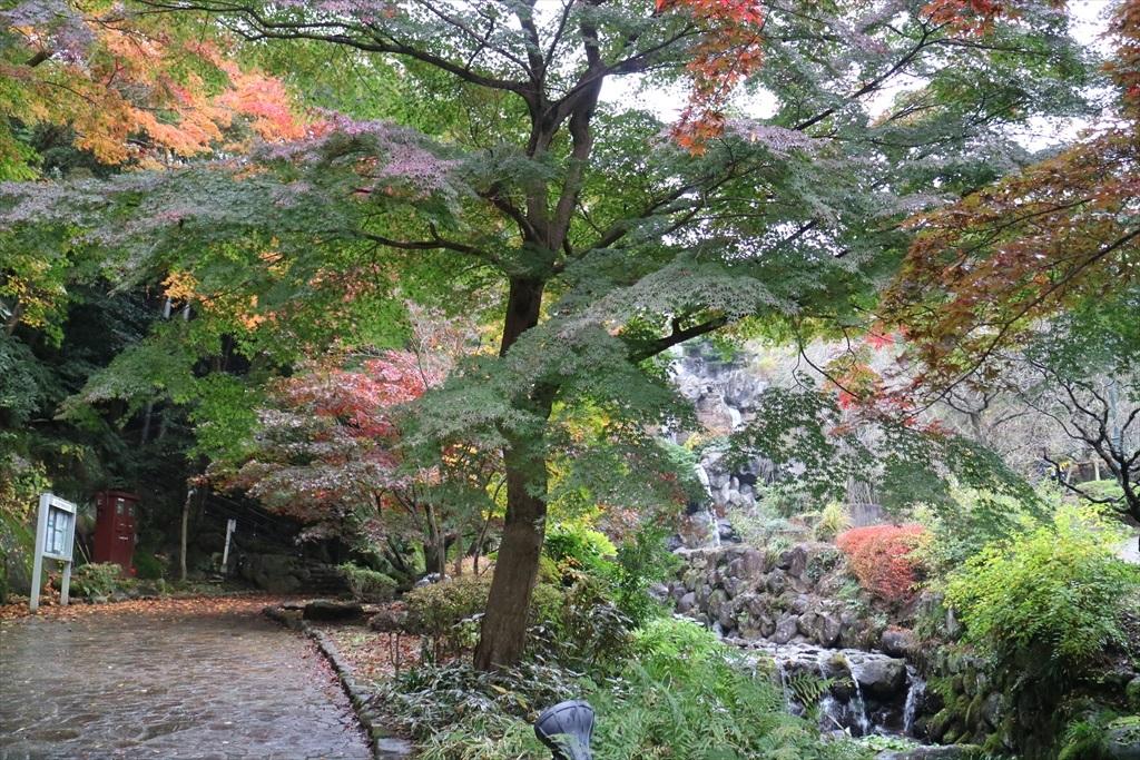 梅見の滝近辺の紅葉_6