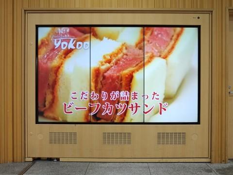 bifukatsuyokoo22.jpg