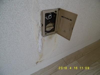 P1110501.jpg