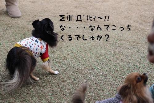 IMG_1270.jpg