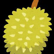 果物(ドリアン