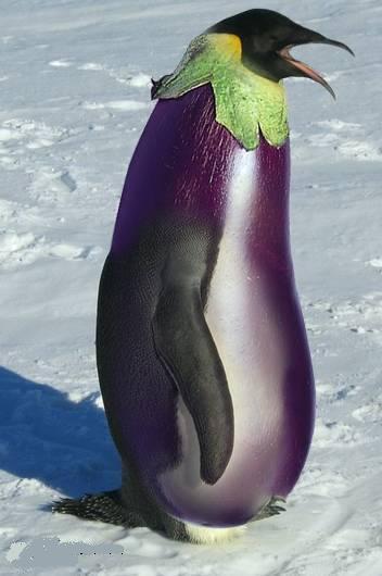 なすペンギン