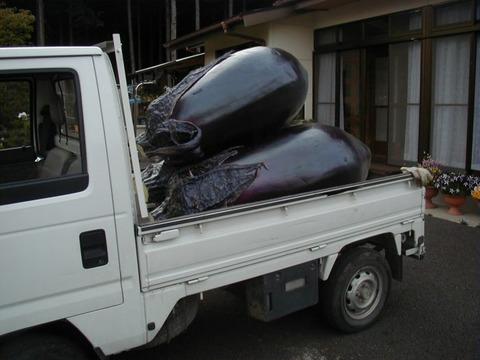 軽トラの荷台に巨大ナス