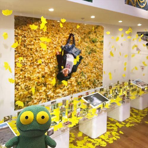 ゆうブログケロブログ大ラジカセ展と川島小鳥写真展 (8)