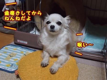 blog8876a.jpg