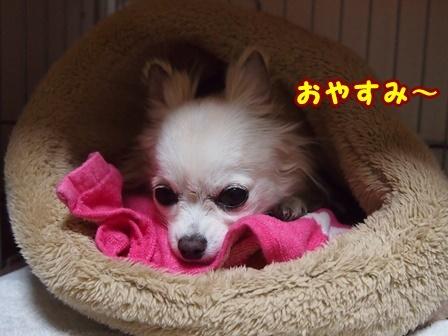 blog8884a.jpg