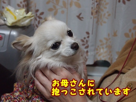 blog9071a.jpg