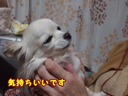 blog9073a.jpg