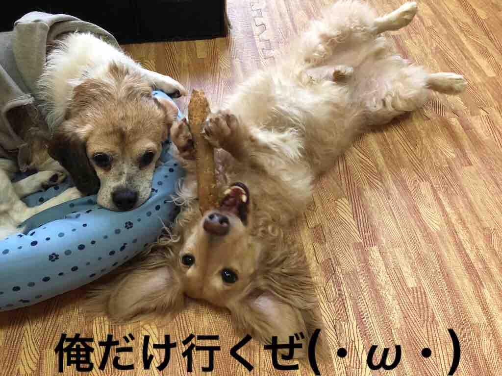 fc2blog_201810271906064af.jpg