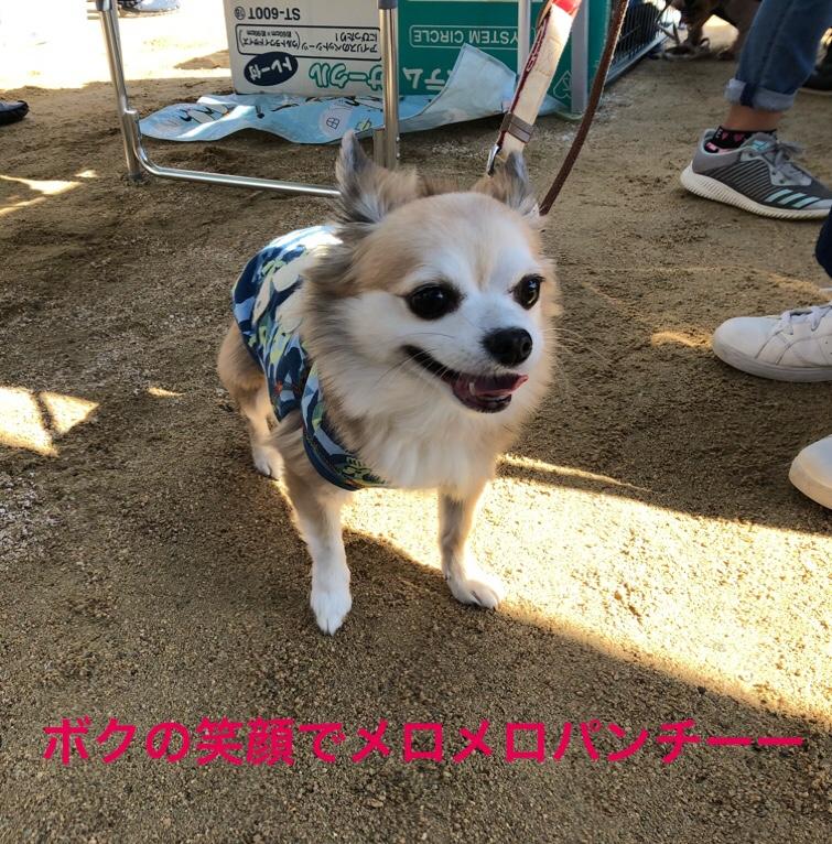 fc2blog_20181031211200d99.jpg