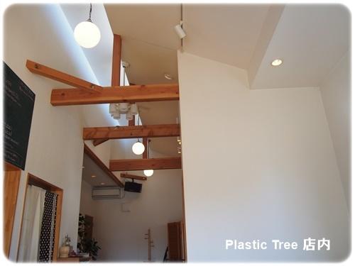 Plastic Tree の店内