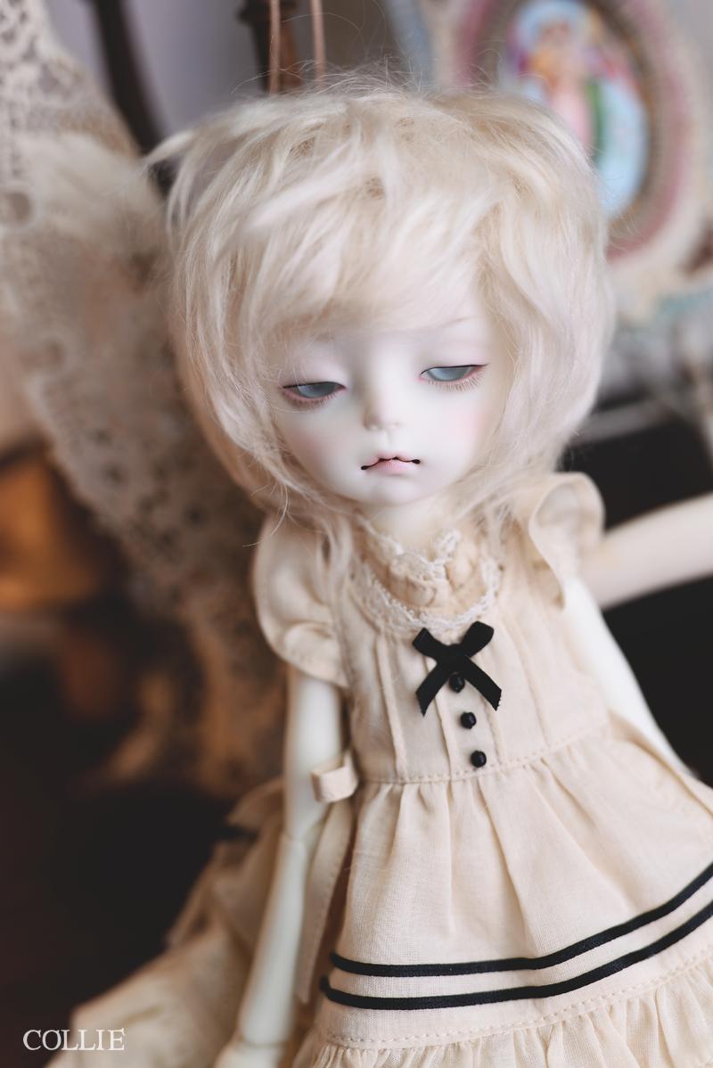DSC_5364s.png