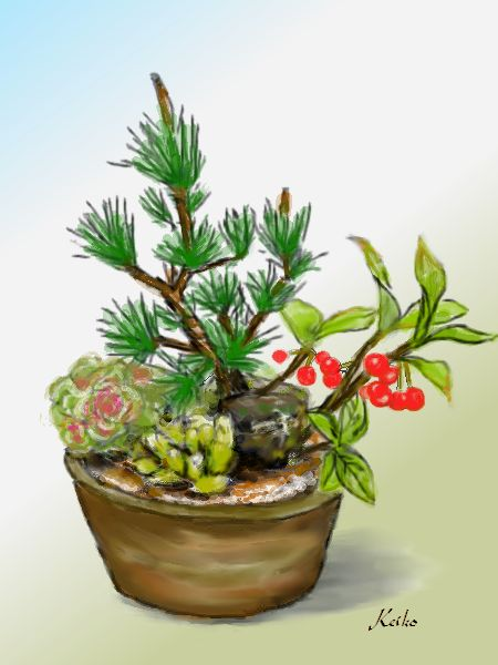 bonsai1-b.jpg