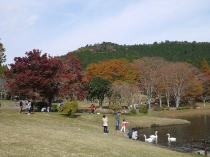 志高湖(1)