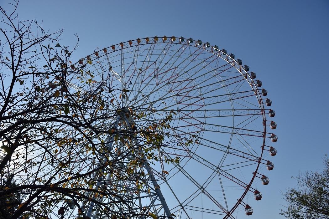 秋の葛西臨海公園