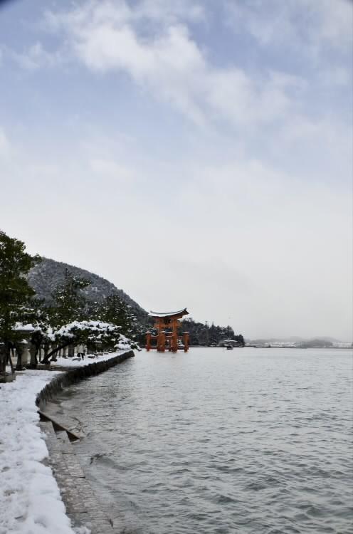 170115yuino003.jpg