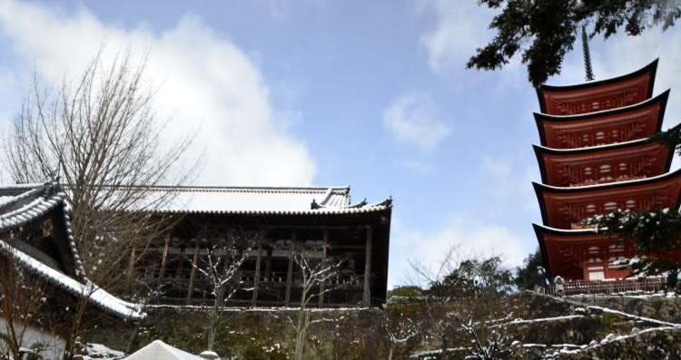 170115yuino006.jpg