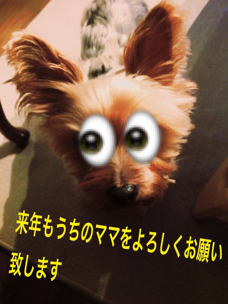 moblog_58b1e2e6.jpg