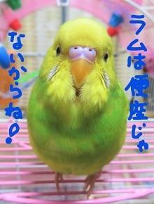 IMG_1323_Ink_LI.jpg