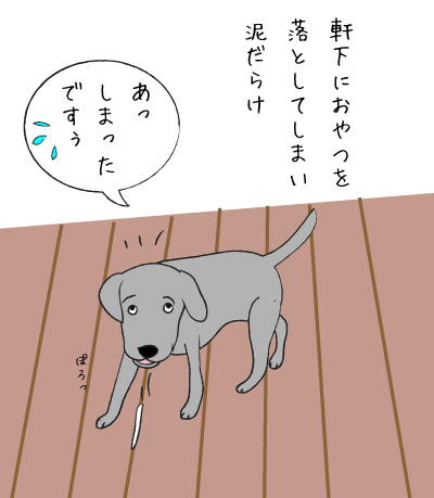 coco16120501.png