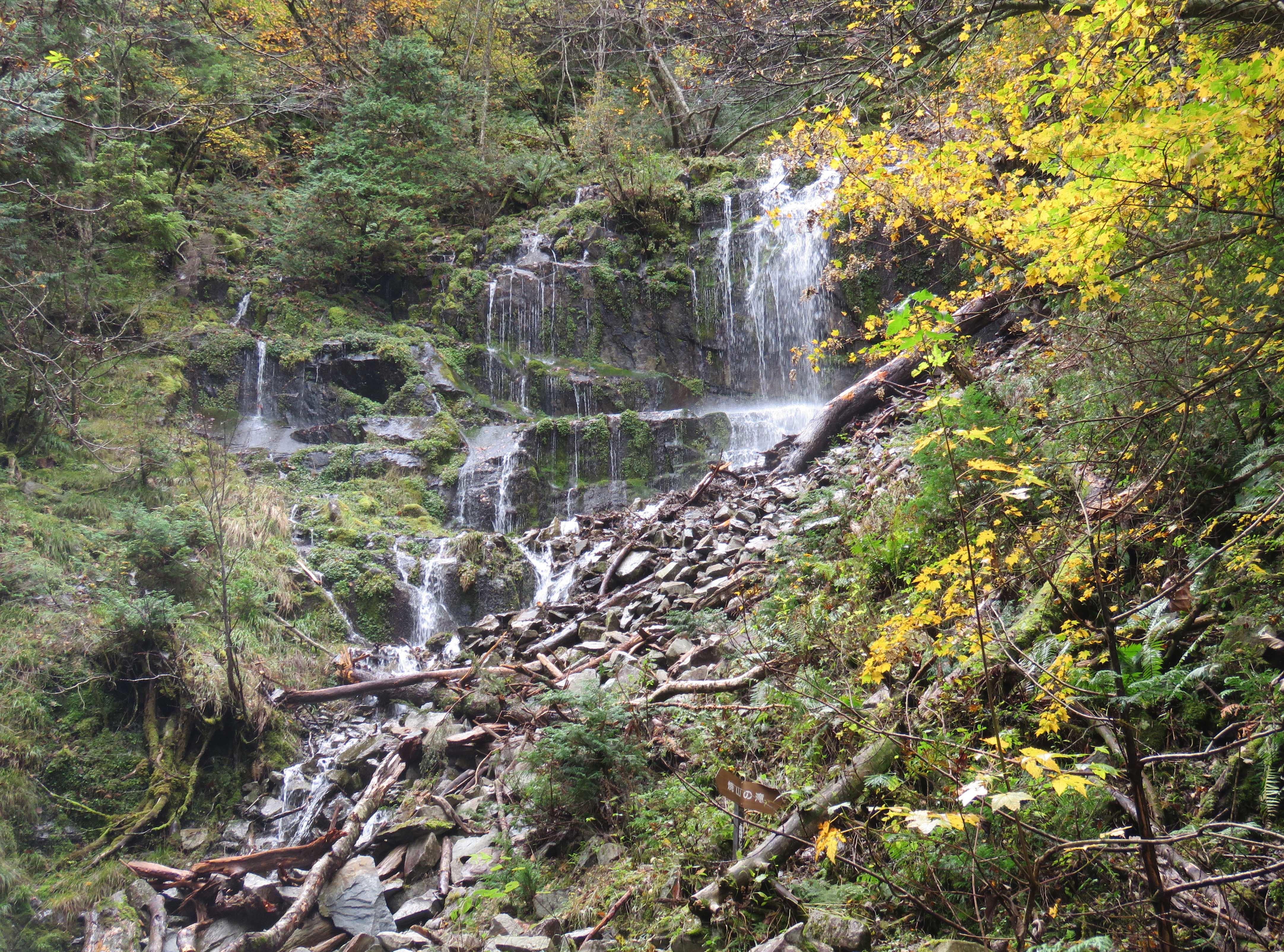 焼山の雌滝C_181008