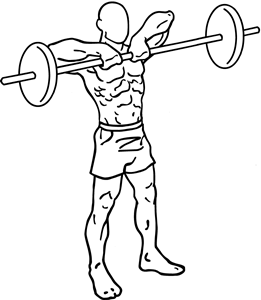 Barbell-upright-rows-1_20161113072654db3.png