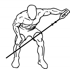 Bent-over-cable-lateral-raises-1.png